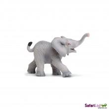 Afrikanisches Elefantenbaby, trötend