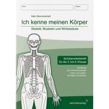Ich kenne meinen Körper – Skelett, Muskeln und Wirbelsäule