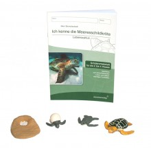SET Ich kenne die Meeresschildkröte mit ORIGINAL SAFARI MINIATUREN