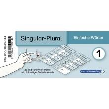 Grammatikdose - Singular Plural-Einfache Wörter