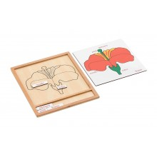 Colored botany puzzle activity set-flower