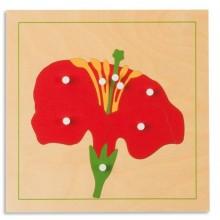 Botanische Puzzle: Blüte