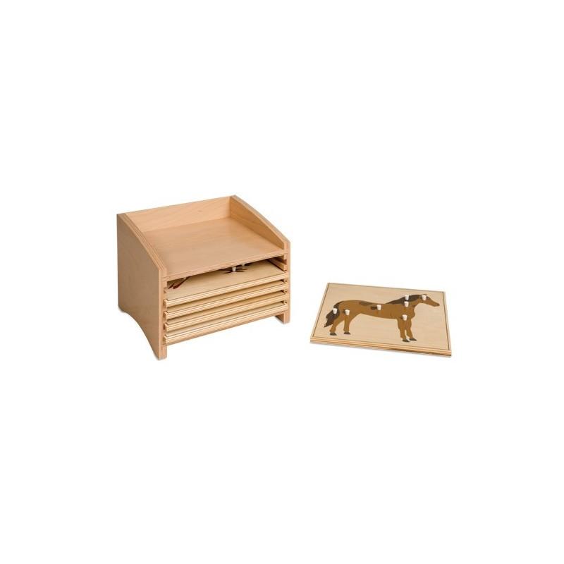 kasten mit f nf f chern f r die tierpuzzles pruefl kg. Black Bedroom Furniture Sets. Home Design Ideas